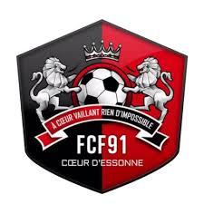 Le FC Fleury 91 en discussion avec le PSG et l'OL pour un partenariat